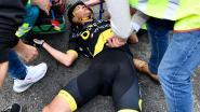 Val kost Terpstra ook Parijs-Roubaix