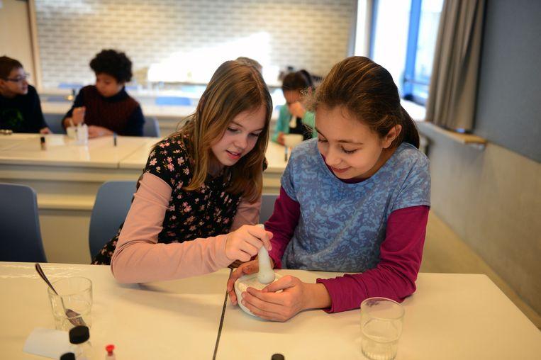 Enkele leerlingen van Vrije Basisschool Ter Bank volgen een workshop biotechniek.