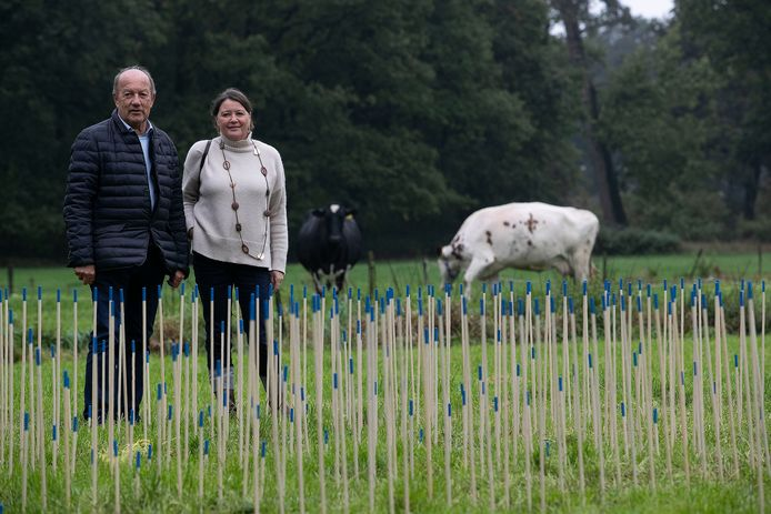 Een onderdeel van Kunstsmullen 2019 bij de Kapellerput in Heeze. Links Wim van Ekelen, rechts Sylvia Vrooyink.