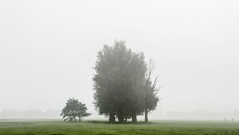 'Van den 23en Octobris tot nu toe zijn er weijnig dagen sonder mist geweest.' Beeld anp