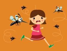 We zijn in oorlog met de mug: 'Zonder zou de wereld er anders uitzien'