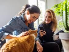 Mopets, le réseau social dédié aux animaux