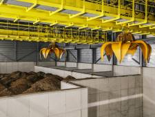 De biomassacentrale van AEB: nog voor de eerste houtsnipper al controversieel