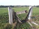 Van het hek bij het weiland waar de runderen liepen, bleef niks over. De koeien liepen er dwars doorheen.