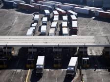 Angst voor lange brexit-files is terug: 'Niemand is gebaat bij stilstaande vrachtwagens'