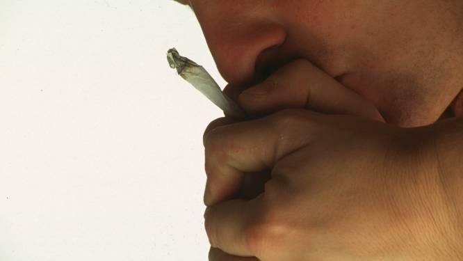 'Cannabisconciërge' riskeert 30 maanden cel