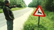 Hertje sterft na aanrijding door motorrijder