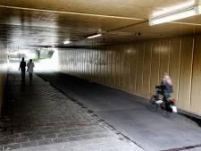 Actieplan: Maarssenbroek snoeit bosschages en pakt illegale kamerverhuur aan