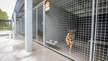 Modernste dierenasiel van het land is klaar, met dank aan erfenis van 1,2 miljoen euro