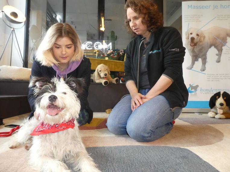 Diana Leeflang (D is for dazzle) met Poppy en hondenmasseur Yvette Behrtel (Kyno Flow): 'Dat stukje ontspanning. Dat zien we graag' Beeld Schuim