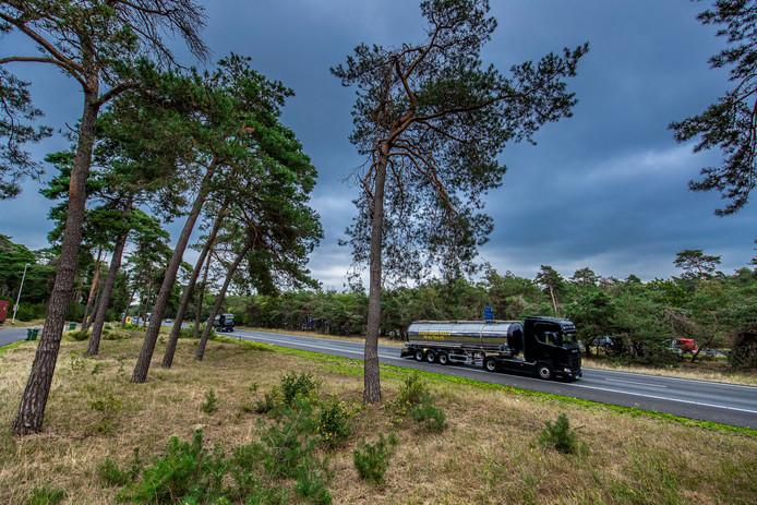 Critici vrezen een kaalslag langs de A28 tussen Wezep en Harderwijk door massale bomenkap in de midden- en zijberm.