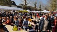 Herzele in de ban van 'Vlaanderens Mooiste'