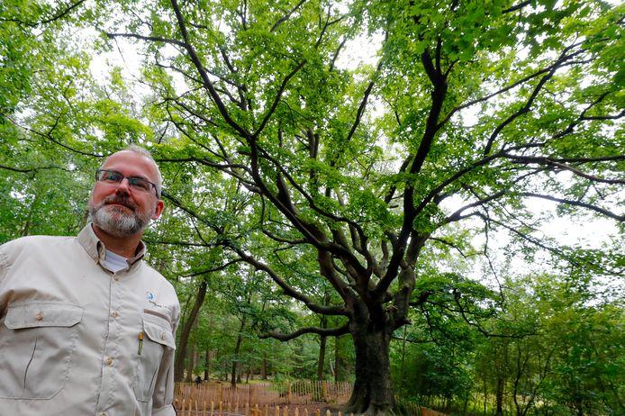 Jan Rots bij de Heksenboom in Bladel. De boom is omringd door een houten hek.