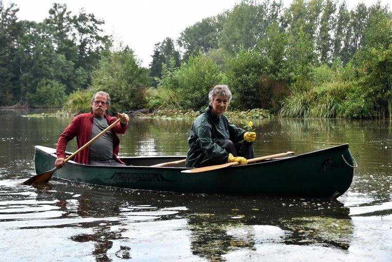 Enkele vrijwilligers van Natuurpunt gingen met een kano in het water.