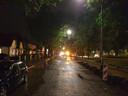 Aan de Winkelsteegseweg trok een boom in zijn val elektriciteitskabels en een gasleiding mee de grond uit.