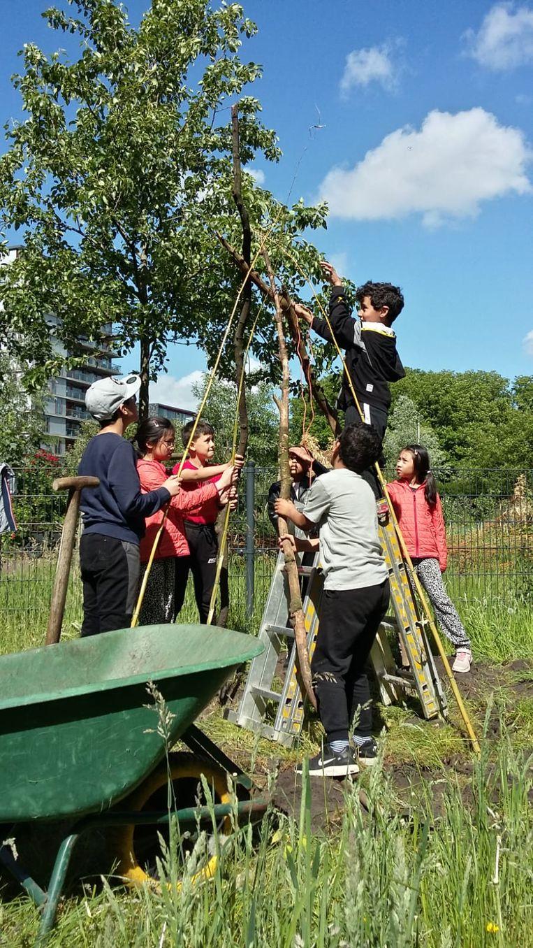 Stadsboerderij Osdorp organiseert de Boerderijspelen voor kinderen van 9 tot 12 jaar. Beeld