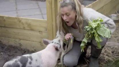 """Britse realityshow zet kandidaten voor verscheurende keuze: """"Word vegetariër, of eet je huisdier op"""""""