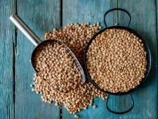 Davantage de lentilles, fèves et haricots secs consommés dans le monde d'ici 10 ans