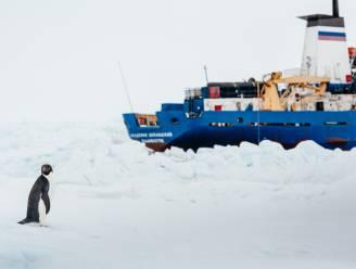 """""""Ook reddende ijsbreker vast in ijs"""""""