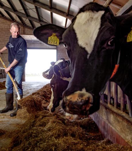 Staat van het platteland: voorbeeldboer met maar tien meter dus koe en klant