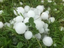 Hagelstenen zo groot als pingpongballen in Wijk bij Duurstede, veel schade voor fruittelers