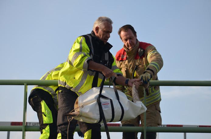 Medewerkers van de dierenambulance helpen samen met een brandweerman een gewonde zwaan. Die laatste behoort wel tot de cruciale beroepen, de dierenambulance niet.