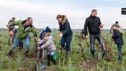 Actie 'maak het groener in Anzegem' opgestart