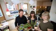 Plantjes ruilen in koffiehuis Marcelline