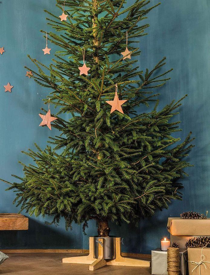 Tree-Nest, 68,35 euro.
