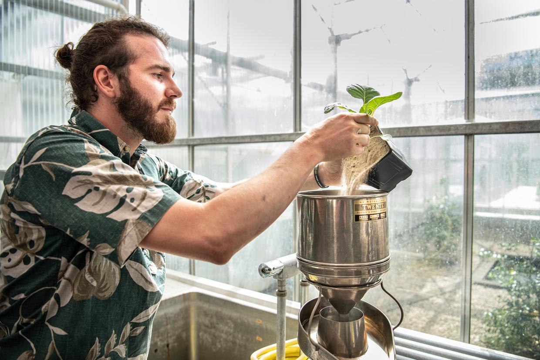 Peter Karssemeijer zoekt in zand naar larven. De Wageningen Universiteit onderzoekt hoe planten zichzelf kunnen verdedigen tegen schadelijke insecten.