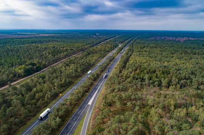 De boomrijke A28 tussen Wezep en Nunspeet.