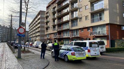 """Deurne opgeschrikt door drie aanslagen in half uur tijd: """"Vanaf nu enkel met kogelvrije vesten naar buiten, en onze hondjes ook"""""""