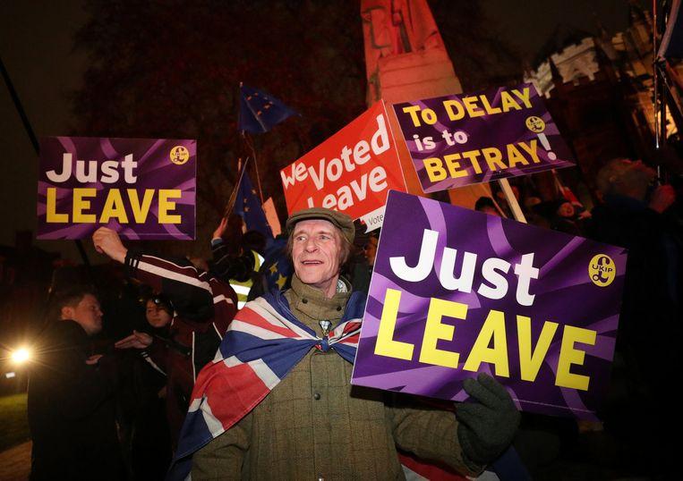 Pro-Brexit demonstranten protesteren tegen uitstel in Westminster, Londen, 29 januari. Beeld REUTERS