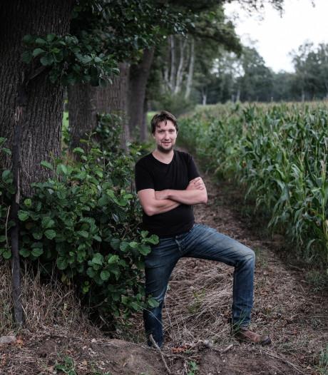 Maisvelden deels nog gered door regen van afgelopen week