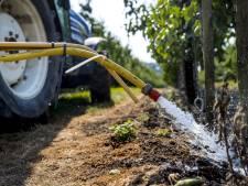 Extra water uit Grift en Valleikanaal voor jonge boompjes in Utrechtse Heuvelrug