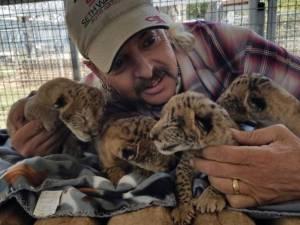 Il tue cinq tigres et tente de tuer un défenseur des droits des animaux, il passera 22 ans en prison