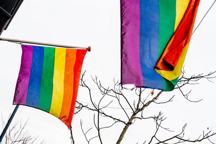 Het college van de gemeente Woensdrecht had al moeten reageren op de Nashville-verklaring, vindt D66 Zuidwesthoek. Bijvoorbeeld door het hijsen van de regenboogvlag of met een eigen verklaring.