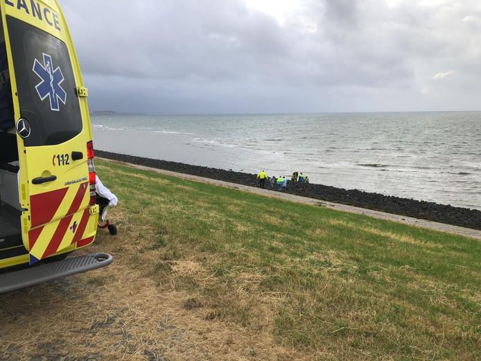 Duiker die bij Wemeldinge in de problemen was gekomen, wordt door de hulpdiensten geholpen.