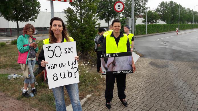 Zo'n dertig actievoerders van The Save Movement protesteerden vanochtend tegen dierenleed en pleitten voor minder eten van vlees bij slachtbedrijf Vion aan het Boseind in Boxtel. Ze vroegen aan de vrachtwagenchauffeurs of die dertig seconden wilden stoppen zodat zij de dieren nog een aai konden geven.