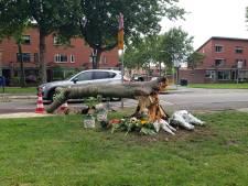 Boom die vrouw uit Zwolle tijdens noodweer dodelijk trof, was al jaren ziek