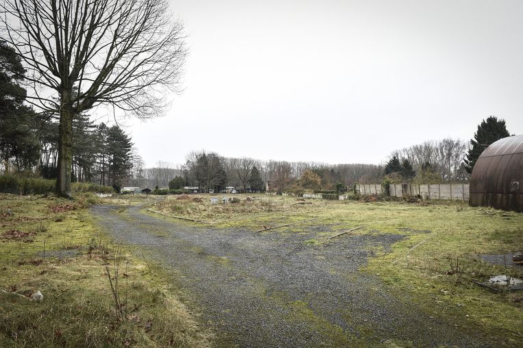 Dit terrein wou de campinguitbaatster ter beschikking stellen van asielzoekers.