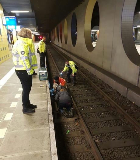 Vermiste rode kater Binkie na vier weken zoeken van spoor Rotterdam-Blaak gered