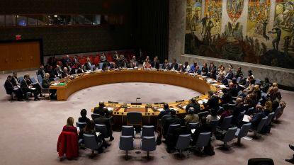 Opvolger van België verkozen in VN-Veiligheidsraad
