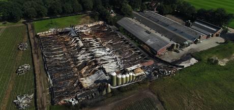 Herdenking op de Dam voor branden varkensstallen