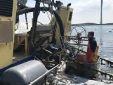 Eerste oogst van de Zeeuwse hangcultuurmosselen