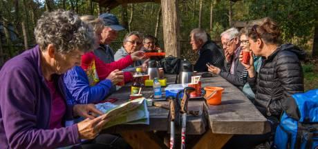 Wandeltocht in Vessem: Het leven overdenken als pelgrim