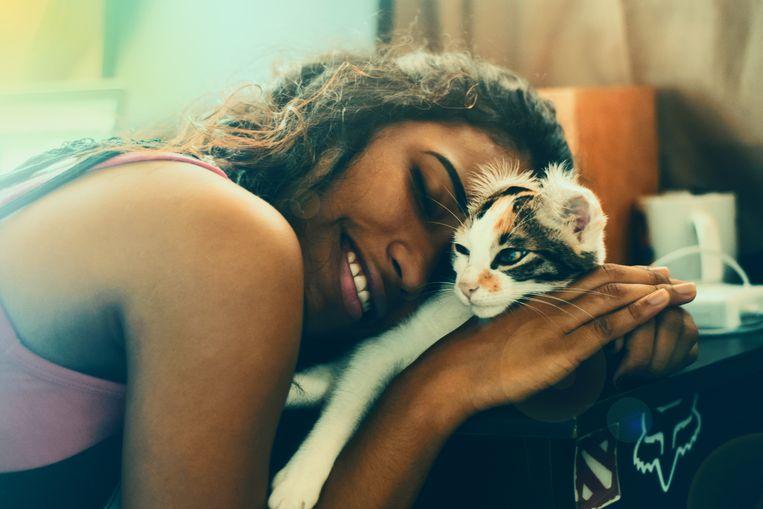 De kat die zich helemaal uit zichzelf (zonder enige vorm van lichte dwang) op je schoot nestelt.
