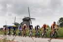 Het peloton rijdt door de polder.