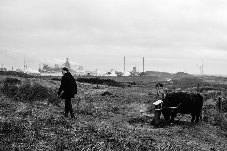 De hoogovens van Tata Steel, gezien vanuit Wijk aan Zee. De omgeving ondervindt overlast door neerslaand grafiet. Het RIVM doet onderzoek. Beeld Sébastien van Malleghem