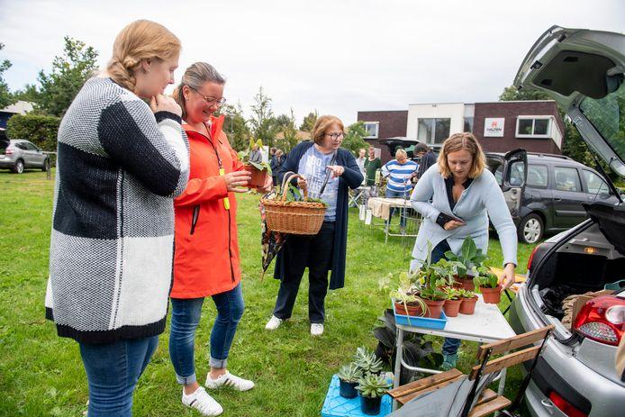 Stekjes ruilmarkt op grasveld Oostermaat op initiatief van plantenasiel